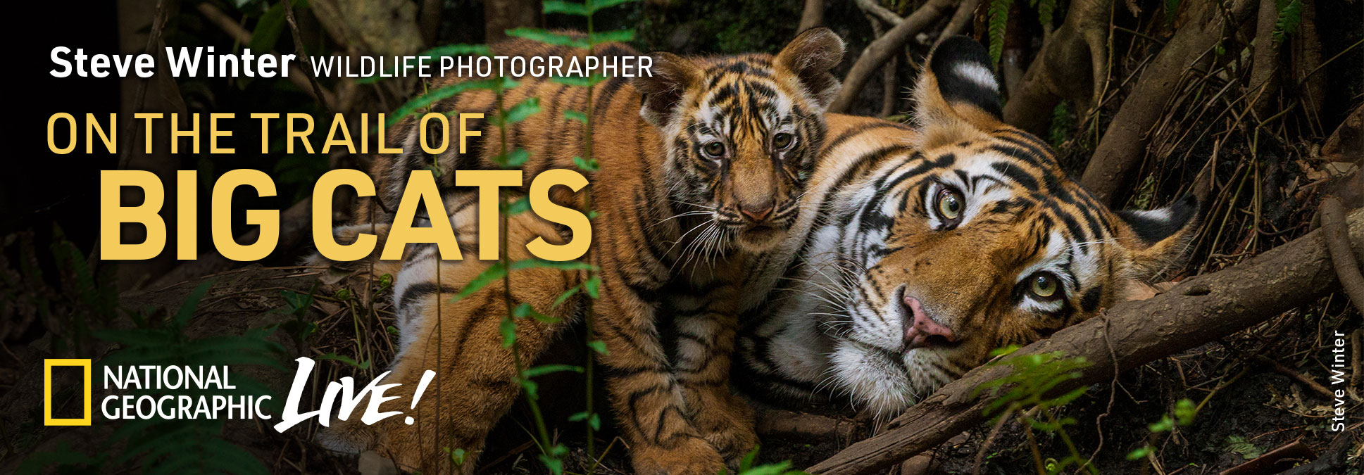 National Geographic LIVE! On the Trail of Big Cats with photographer Steve Winter